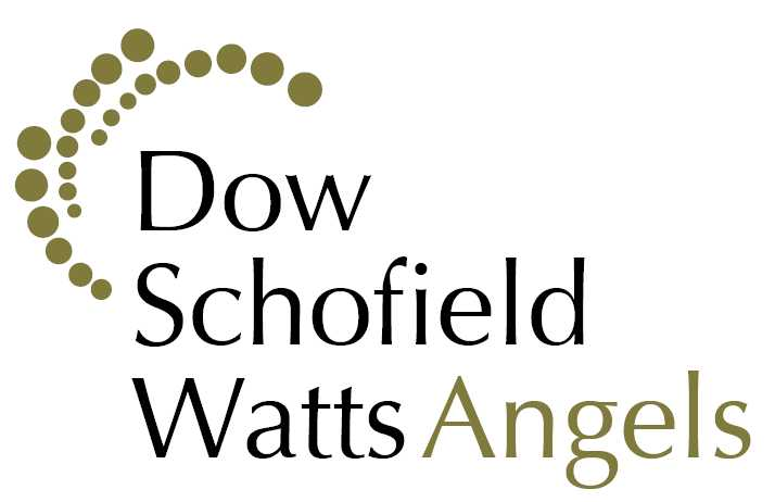 DSW Angels – review of venture capital in the first half of 2020